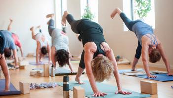 Yoga Basics 2 | Breathe Yoga + Wellness Centre
