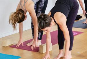 Back to Yoga School: Flow Fundamentals